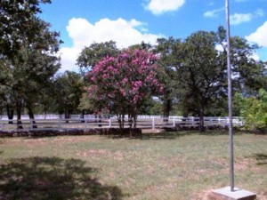 Fredericksburg TX horse property for sale