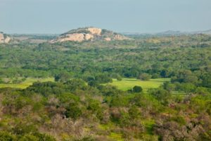 Real Estate in Texas Hill Country